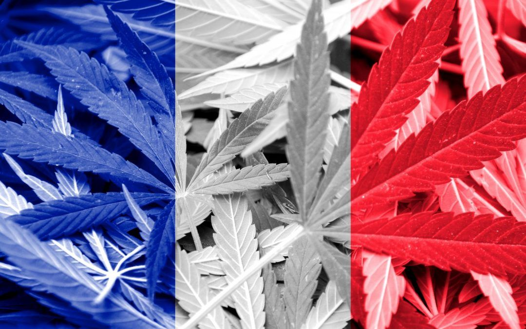 Point légal en matière de cannabis, THC, CBD